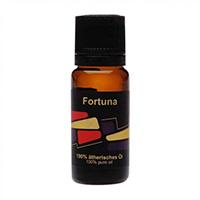 STYX Fortuna